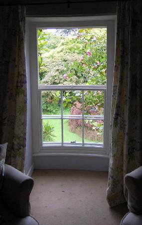 Plas Bodegroes: Our window