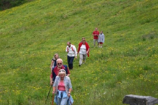 Berghotel Zirm: gita alla malga