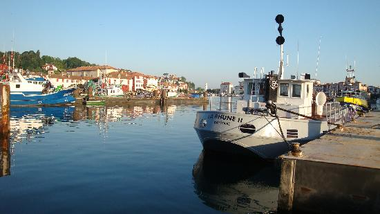 Hotel Colbert : Fishing port in St. Jean de Luz