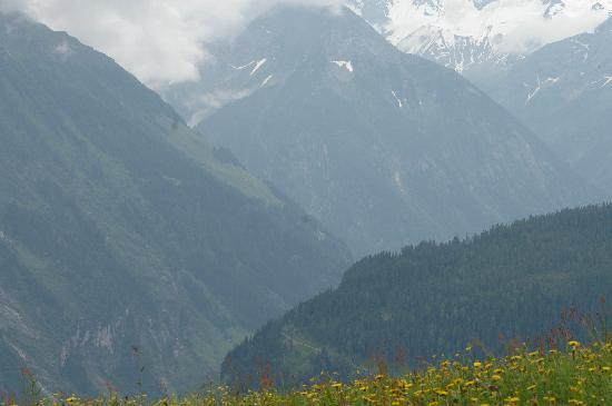 Hotel Tuxertal: Hiking View