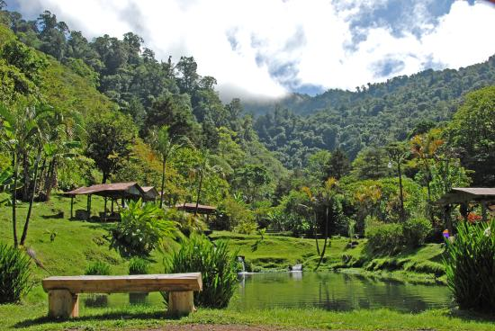 Kiri Mountain Lodge: The trout pool