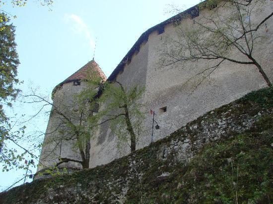 Alp Penzion : Bled Castle