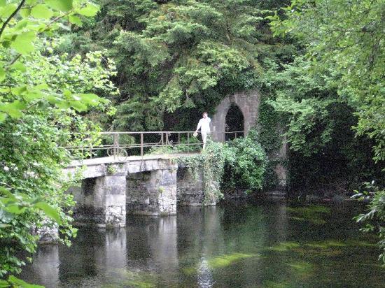 Connemara Safaris : Cong Abbey landscape