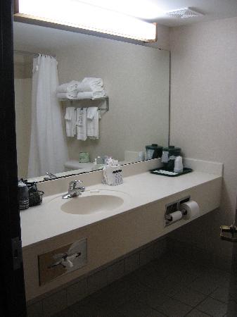 แลนซิง, มิชิแกน: Basic Room - Bathroom 1