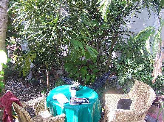 Coconut Palms Inn: Coconut Palms Garden outside of the Dolphin Room