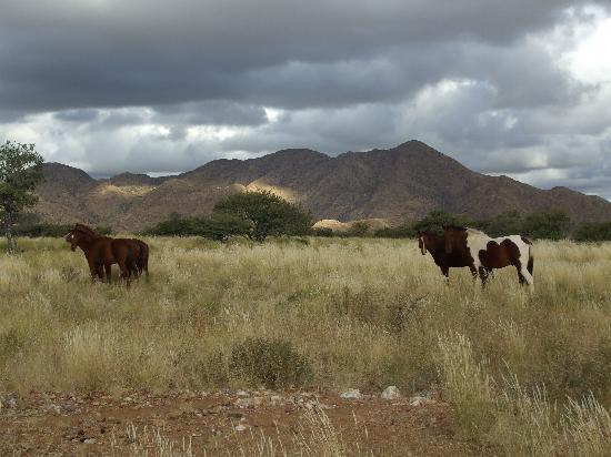 Corona Guest Farm: afternoon hike