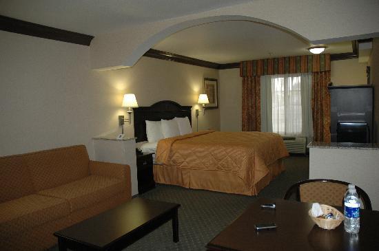 Comfort Inn & Suites Near Universal - N. Hollywood - Burbank: Nice room (like a jr. suite)