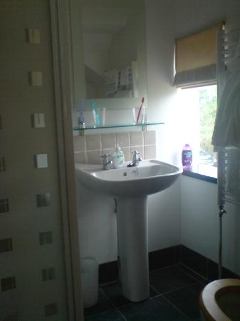 Southwood House Bed and Breakfast: Bathroom