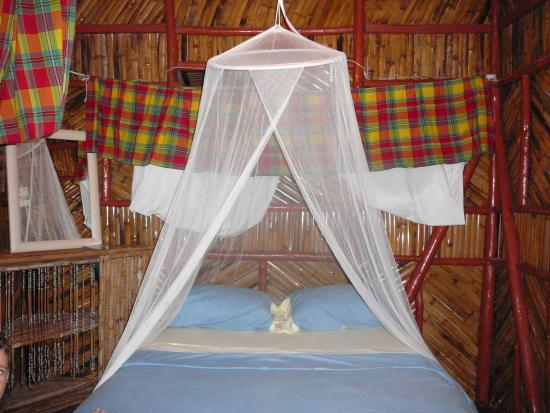 Tia Bamboo Cottages: Cottage - inside
