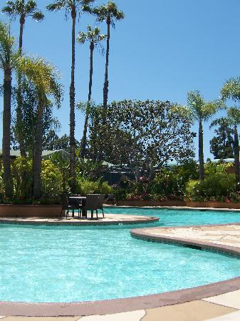Carlton Hotel Newport Beach: The pool