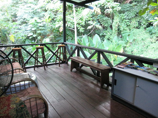 Travellers' Light Backpackers Lodge: quiet greenery