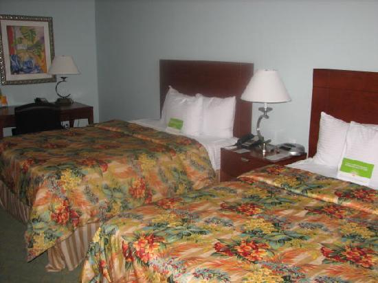 Holiday Inn Express Tampa North - Telecom Park: room