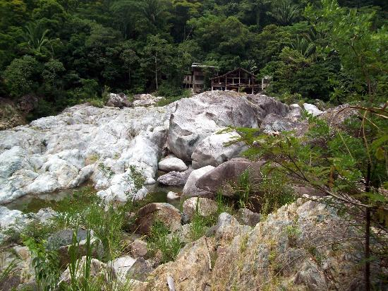 Jungle River Lodge