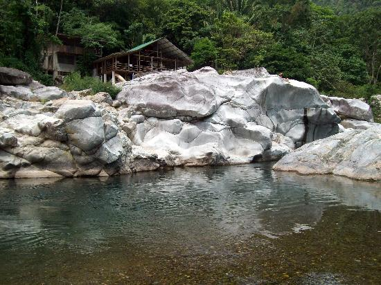 Jungle River Lodge: Jungle River Lodge 2