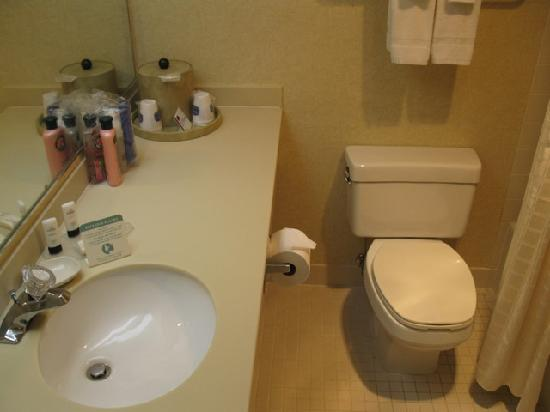Fairfield Inn by Marriott Bangor : Bathroom
