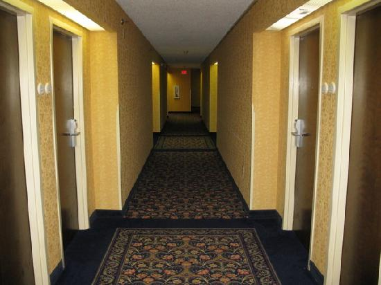 Fairfield Inn Bangor: 2nd Floor Hallway