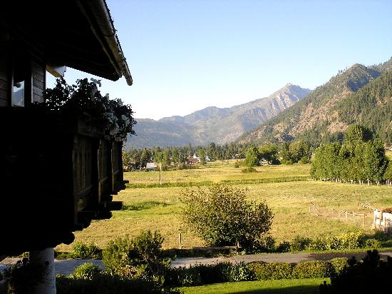 Abendblume: View from our room