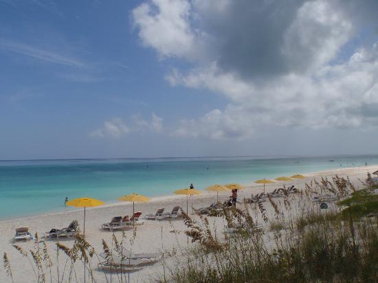 Alexandra Resort: Beach at the Alex