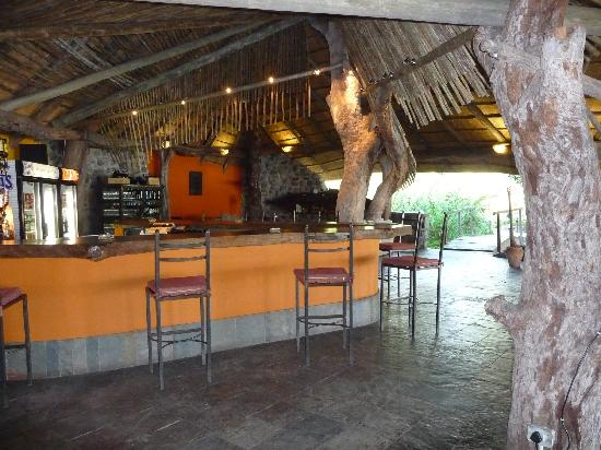 Thamalakane River Lodge : bar