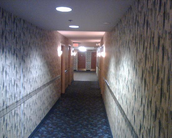 Holiday Inn Express & Suites Pigeon Forge - Sevierville: Walkway with wallpaper