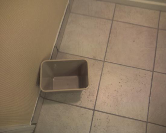 Springwood Suites: Trash can - no trashbag