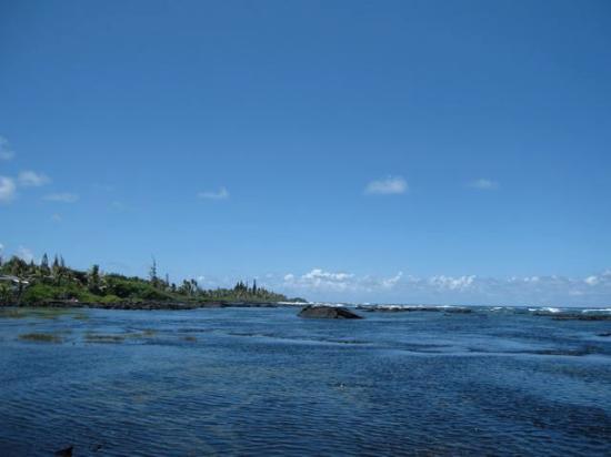 Photo of Hawaii Paradise Suite Keaau