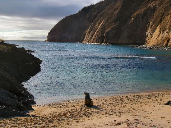 San Cristobal Galapagos Hotels