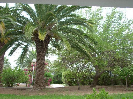 El Mouradi Port El Kantaoui : vue de notre chambre sur les jardins