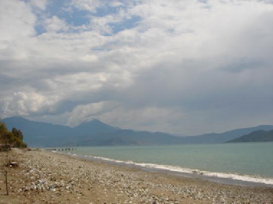 Pastoral Vadi Ecologic Life Farm: The beach