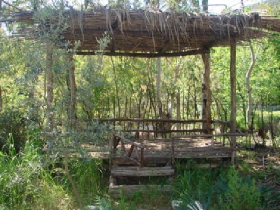 Pastoral Vadi Ecologic Life Farm: Relaxing...