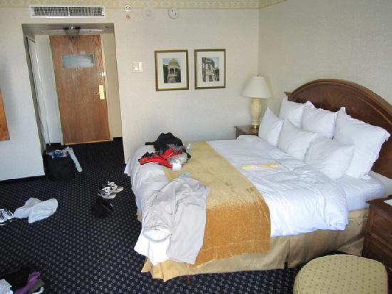 Tampa Airport Marriott : Chambre vue 1