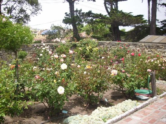 Monterey Museum of Art : Gardens