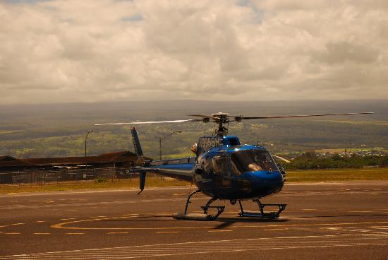 See The Water Color  Picture Of Blue Hawaiian Helicopters  Hilo Hilo  Tri