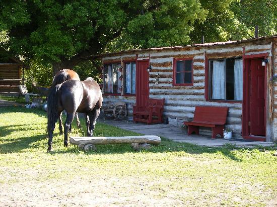 Granite Creek Guest Ranch: Cabins