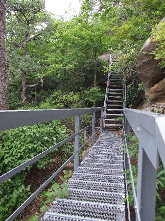 Zilpo Campground: One of the DOZENS of staircases leading to Tater Knob Tower