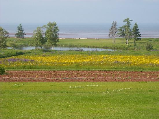 Amherst Shore Country Inn: Room with a view