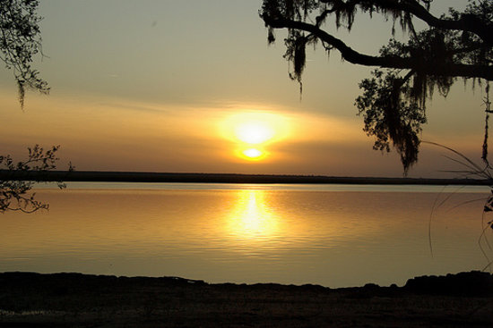 Cumberland Island, จอร์เจีย: Sunset from the camping ground, a few dolphins had just passed by some time before