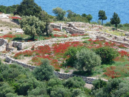 Ramnous Archaeological Site: Aan de andere kant van de berg, uitzicht op Ramnous