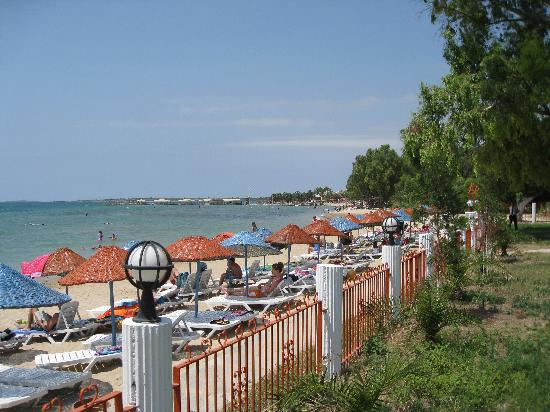 Holiday Resort Hotel: Hotel private beach