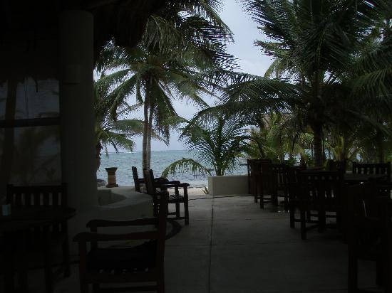 Las Terrazas Resort: Restaurant