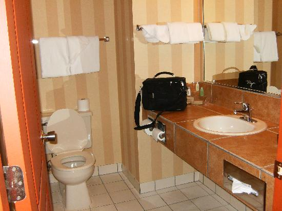 Prestige Inn Golden: Bathroom