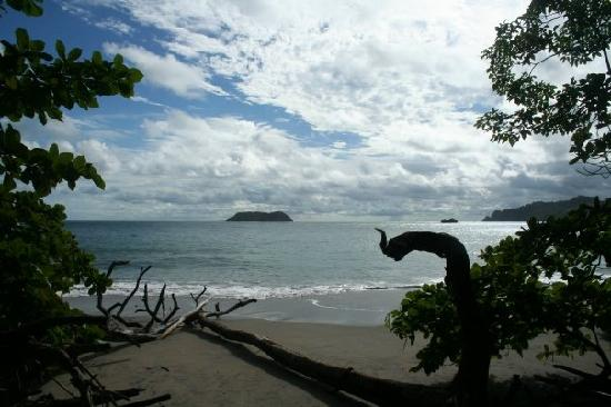 Los Suenos Marriott Ocean & Golf Resort: Beach at Manuel Antonio