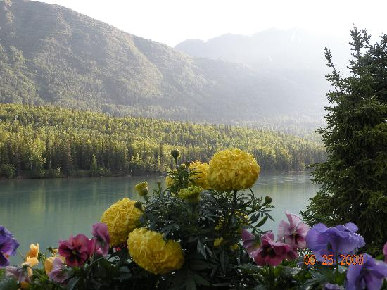 Upper Kenai River Inn : Beautiful view of Peggy & Jim's dock & flowers!