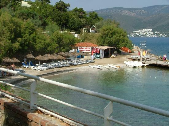 Blue Dreams Resort: and the small beach.