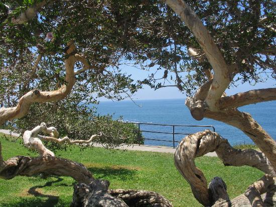 Dana Point, Kalifornien: Pacific Ocean