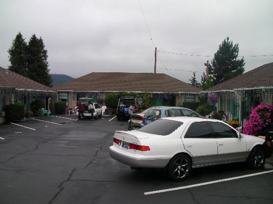 Rose City Motel: The Main Court