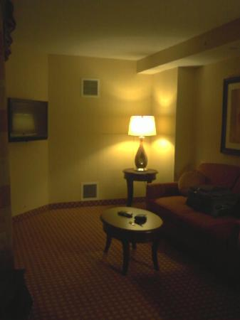 Hilton Garden Inn Toronto Airport: Another pic of the sitting area