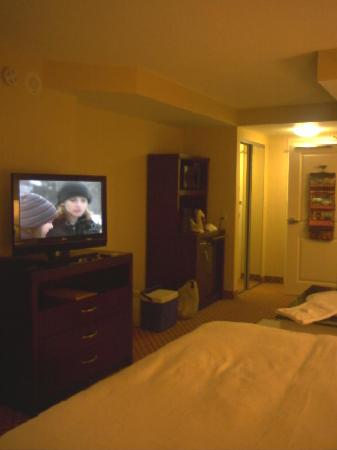 Hilton Garden Inn Toronto Airport: Nice flat screen tv's
