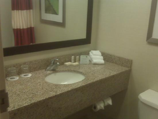 Courtyard by Marriott Albany Airport : Updated bathroom