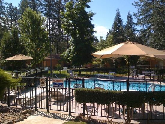 Ponderosa Gardens Motel: Lovely pool area